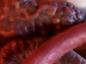 Crazy Japanese Tentacle Porn, I don't know what more to say about it