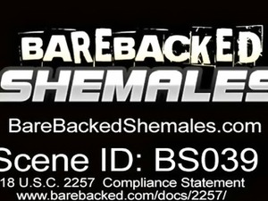 Beautiful Shemale Having Bareback Scene