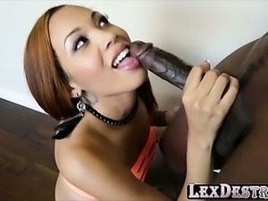 Beautiful Ebony Serena gets destroyed by Lexington Steele