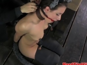 BDSM fetish sub Casey Calvert cat play
