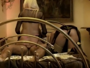 doting girlfriends share a cock in a threesome encounter