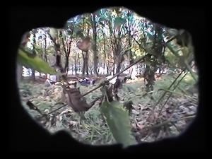 2 Lesbenfotzen im Wald heimlich gefilmt-krass!